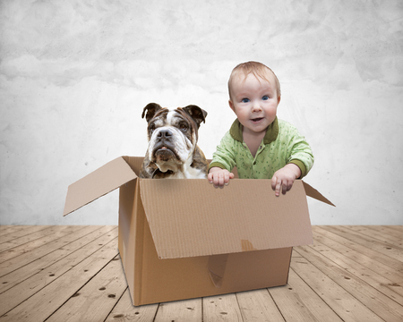 Baby and dog playing in a paper box