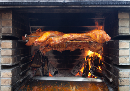 young pig on a barbecue grill
