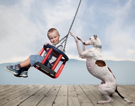 little boy and dog play on the swing