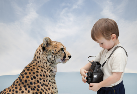Little boy with old camera photographs big cat