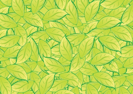 green leafs background Stock Vector - 12238288