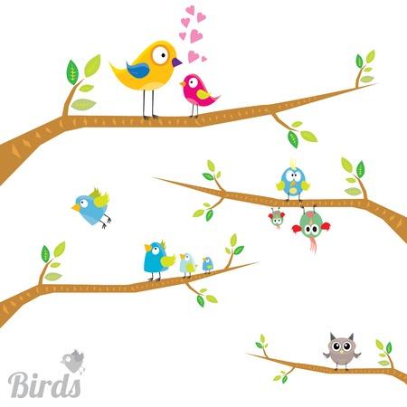 Vector lovely Birds on branch Illustration