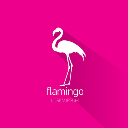 flamingo: vector silhouette of flamingo with long shadow on stylish pink background