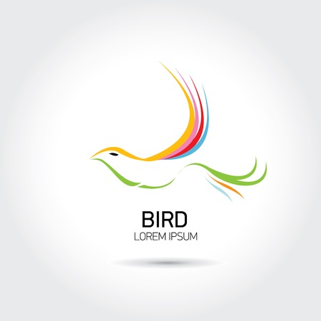Color Bird abstract flying icon design template. freedom and creative mind sign Vector