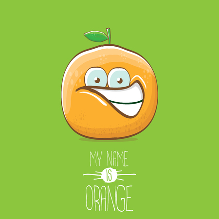 vector funny cartoon cute orange character isolated on green background. My name is orange vector concept. super funky citrus fruit summer food character Stock Vector - 109371498