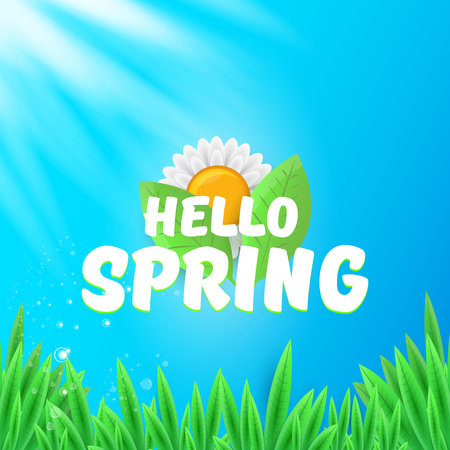 vector hello spring banner with green grass, sky and flowers. hello spring flyer, banner or background with green field landscape Illustration