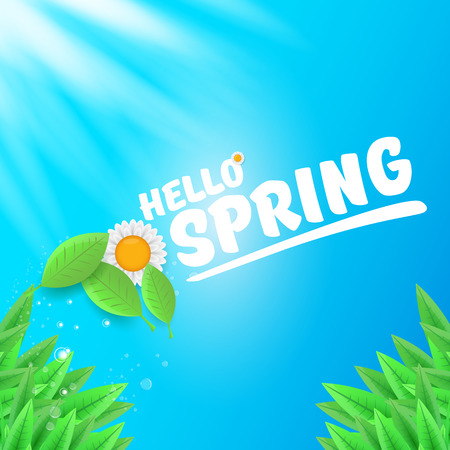 vector hello spring banner with green grass, blue sky and flowers. hello spring flyer, banner or background with green field landscape