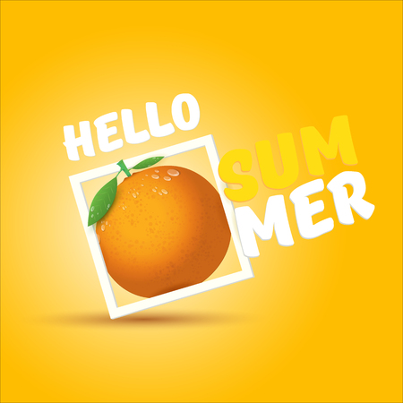 Vector Hello Summer label or flyer Design template with fresh orange fruit isolated on orange background. Hello summer concept label or poster with fruit and letternig text Ilustrace