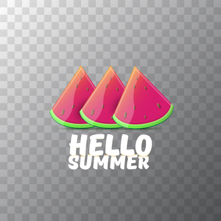 Vector Hello Summer Beach Party Flyer Design template with fresh watermelon slice isolated on transparent background. Hello summer concept label or poster with fruit and typographic text