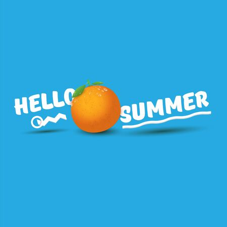 Vector Hello Summer label or flyer Design template with fresh orange fruit isolated on blue background. Hello summer concept label or poster with fruit and letternig text Imagens - 124823766