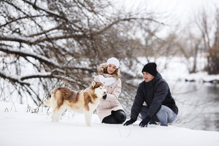 warm clothes: A young pregnant couple walking in the woods with the dog red Husky with blue eyes. Snowy morning in the forest. A girl and a guy dressed in warm clothes