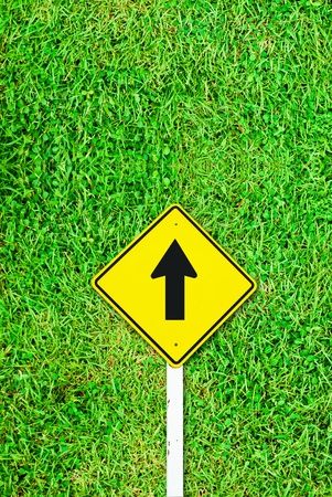 Go ahead traffic sign on grass field background texture photo