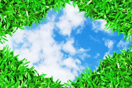 green grass frame on beautiful cloudy blue sky background Stock Photo - 8335047