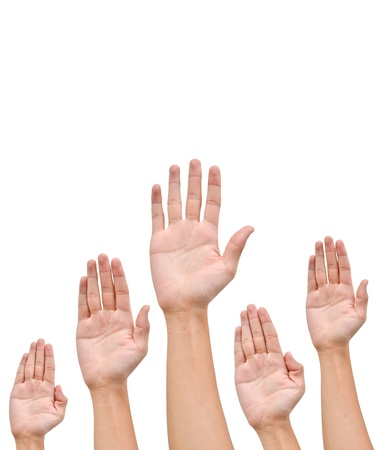 Many Hands raise high up on white background photo