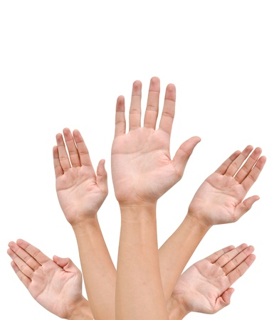 Many Hands raise high up on white background Stock Photo - 9727585