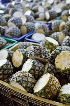 factory farm: Fresh Pineapples from farm - Tropical fruits