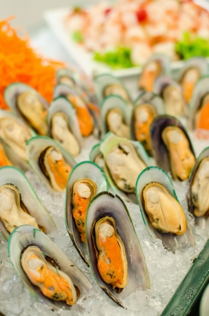 Fresh mussels on ice tray in seafood buffet set photo