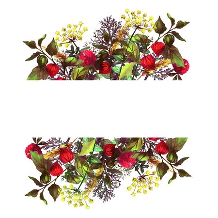 Colorful frame with herbs and flowers. Autumn and summer mood. Mint, dill, physalis, spike of wheat, sagebrush, clover