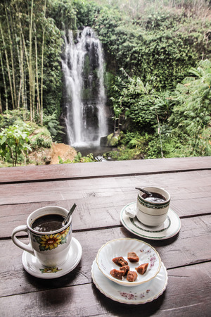 kopi: Civet coffee Kopi Luwak served in two cups with sugar and view of waterfall - Bali, Indonesia Stock Photo
