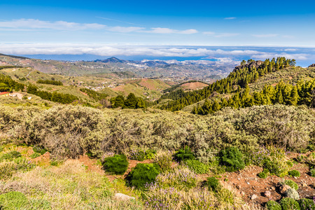 Beautiful View From Pico de las Nieves - Tejeda, Gran Canaria, Canary Islands, Spain Imagens