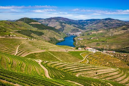 Douro Valley Near Pinhao - Vila Real District, Portugal, Europe