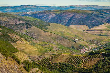 Vignobles dans la vallée du Douro - District de Vila Real, Portugal, Europe
