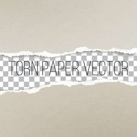 Realistic torn paper edge with shadow vector template. ripped broken piece of color carton page with empty area for your text. Mockup for banner, leaflet, cover, poster design.