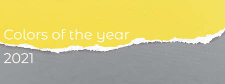 Colors of the year 2021 Yellow Illuminating and ultimate gray torn paper textured background. Vector illustration