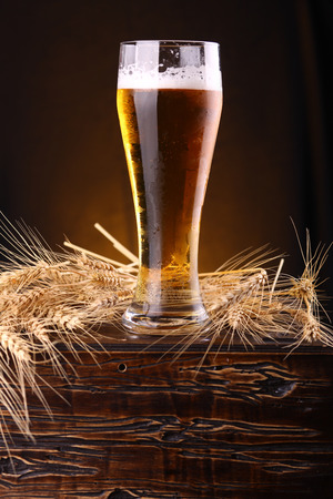 pilsner beer: Tall glass of light beer on a wooden chest with barley ears Stock Photo