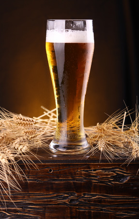 Tall glass of light beer on a wooden chest with barley ears photo