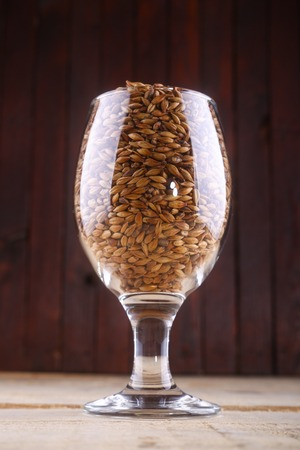 malted: Glass full of malted barley over a wooden background