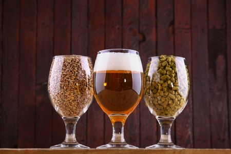 Glasses of beer, malt and hops over a wooden background Stock Photo