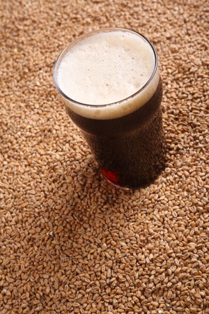 malted: Nonic pint glass of dark beer over malted barley grains
