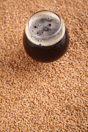 malted: Snifter glass with black beer standing over malted barley grains