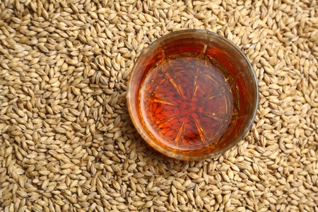 tumbler: Tumbler glass with whiskey standing on barley malt grains