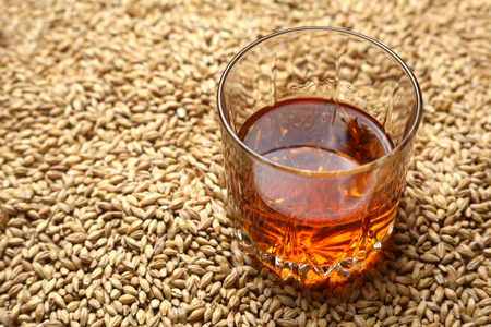 barley malt: Tumbler glass with whiskey standing on barley malt grains