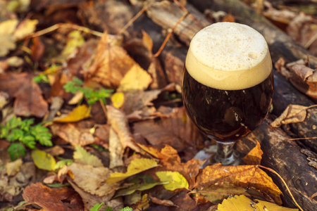 Glass full of dark beer on the forest floor among leaves and branches on an autumn day Stock Photo
