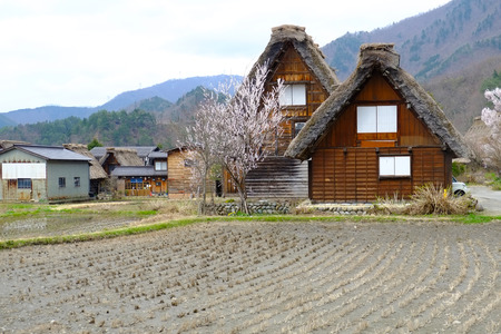 gifu:  Village, Shirakawago, Gifu, Takayama, Japan Stock Photo