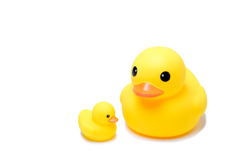 Yellow rubber duck toy in isolate white background, have big one and small one duck