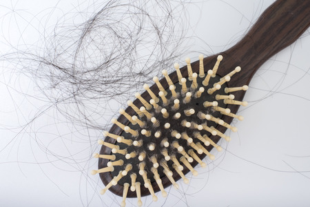 pressure loss: Hair loss problem on bruch, on white background, women postpartum defluvium Stock Photo