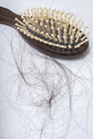Hair loss problem on bruch, on white background, women postpartum defluvium 写真素材