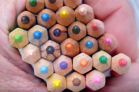 Colored pencils. Reklamní fotografie