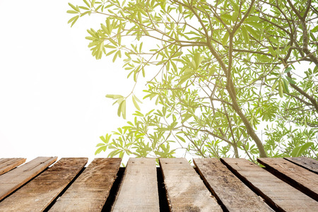 wooden floor on flare light tree background