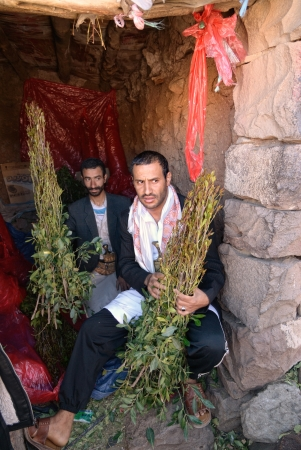Two unidentified men wait customer to sale fresh Khat in Sanaa region on March 14, 2010. Catha Edulis (Khat) contains the alkaloid called cathinone, an amphetamine-like stimulant is a stimulant narcotic is illegal substance in the most countries Stock Photo - 13860748