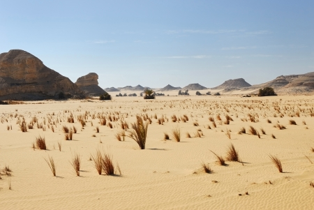 Western desert, Sahara, Egypt photo