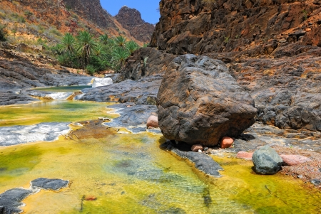 Mountain river amongst rocks on background of the mountains and palms tree, Socotra, Yemen Imagens - 13882830