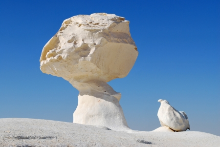The limestone formation rocks like a mushroom and a chicken in the White desert, Sahara, Egypt photo