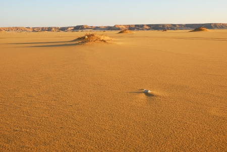 The Sahara desert, Abu Monkar dunes, Egypt