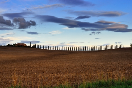 Idyllic Tuscan landscape at sunset light  near Pienza, Vall d Stock Photo - 15916868