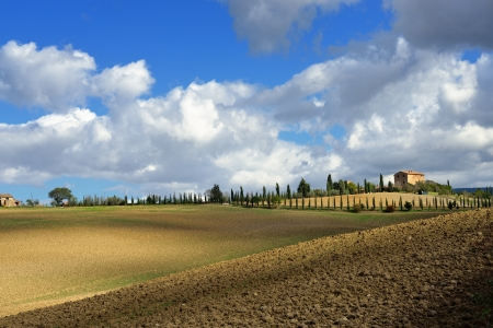 Idyllic Tuscan landscape at sunset near Pienza, Vall d Stock Photo - 17094914